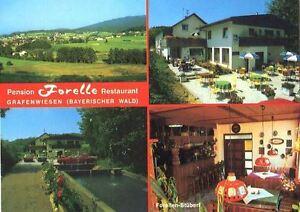 AK-Grafenwiesen-Pension-034-Forelle-034-4-Abb-ca-1980