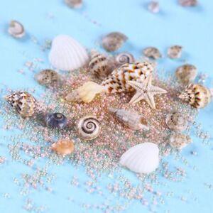 Natuerliche-niedliche-Muschelschalen-Starfish-Sea-Beach-Ornaments-3D-Nail-Art-Neu