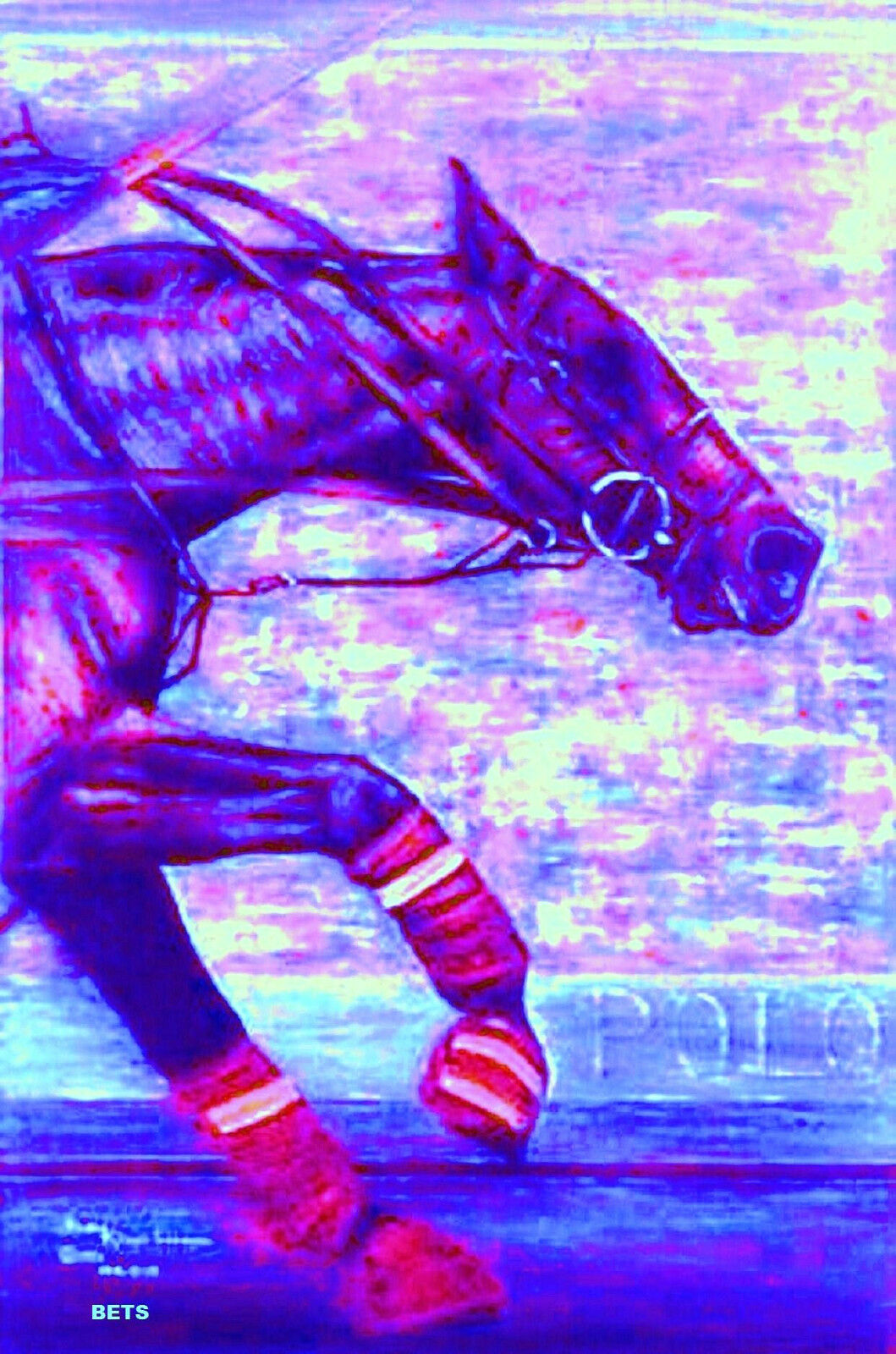 HORSE PRINT Giclee Polo Art BREAKAWAY by artist BETS 5 ColoreeeS print Dimensione 14 X 19