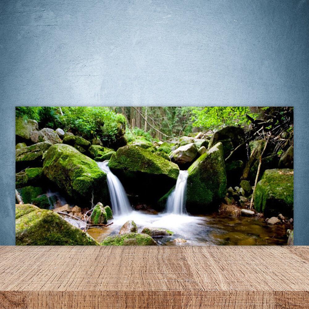 Crédence de cuisine en verre Panneau Paroi 100x50 Nature Rochers Cascade