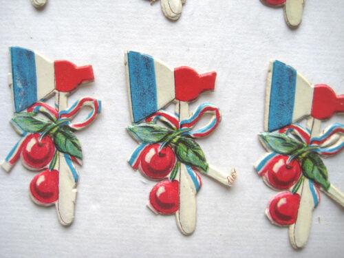 German Scout Cherry