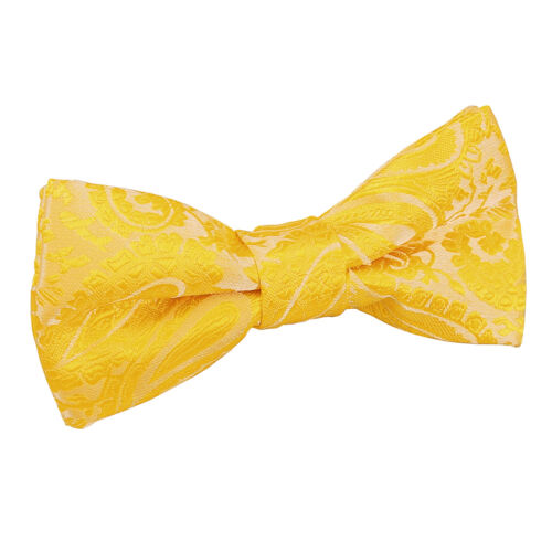 Boys Bow Tie Woven Floral Paisley Adjustable Wedding Pre-Tied Bowtie by DQT