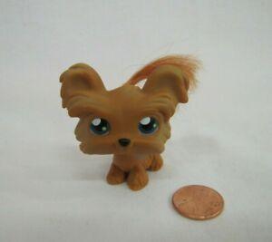 Littlest Pet Shop Lps 6 Brown Yorkie Shih Tzu Puppy Dog W Green