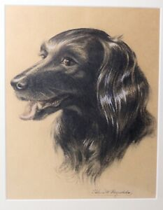 vintage-original-dog-spaniel-pastel-portrait-drawing-sketch-realism-painting
