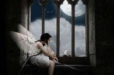 Incorniciato stampa-Gotico ALATA Angel concatenati in una finestra (foto poster arte)