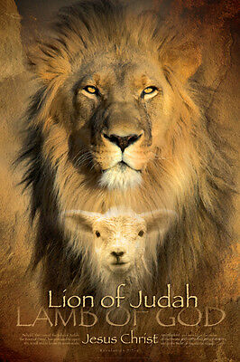 Judah Lion Poster Print, 24x36