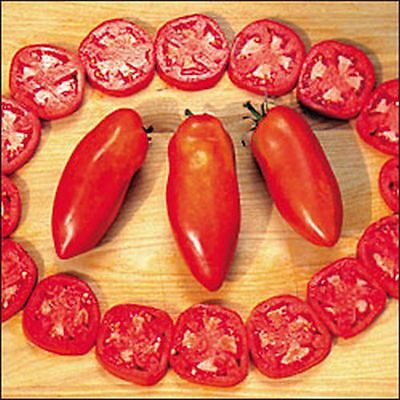 Opalka Tomato 5 seeds