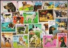 DOGS ON STAMPS-100 Different-Used Worldwide Large Postage Stamps
