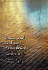 Down and Out in Providence: Memoir of a Homeless Bishop by Geralyn Wolf (Paperback, 2005)