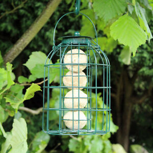 Delicious New Bird Feeder Large Garden Deluxe Hanging 3 In 1 Suet Fat Ball Seed Nut Wild Other Bird & Wildlife Accs
