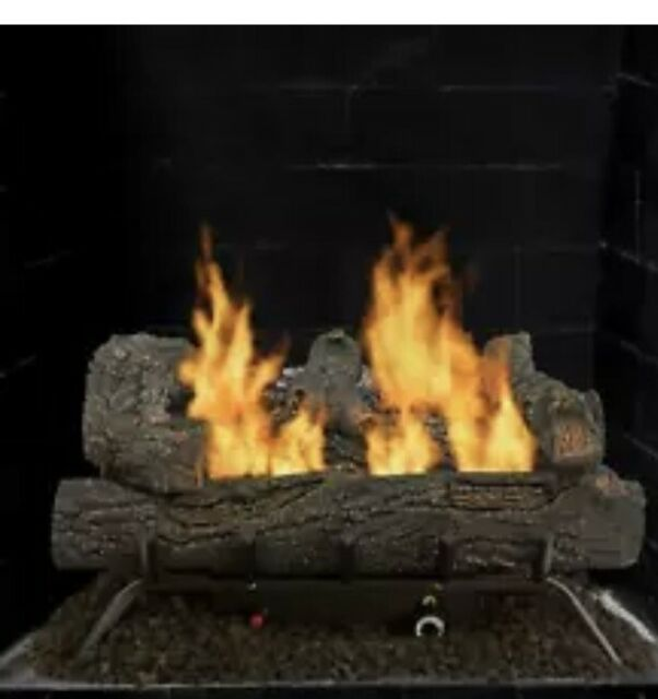 Propane Natural Gas Fireplace Insert Dual Fuel Vent Free Thermostat Ods 29 In For Sale Online Ebay