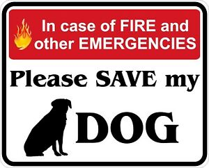In-Case-of-Fire-Save-My-Dog-Decals-Stickers