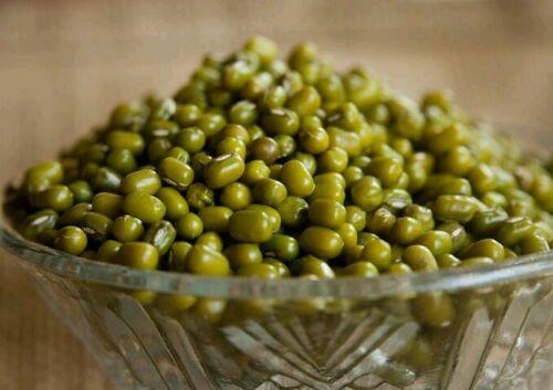 ☺100 graines de haricot mungo
