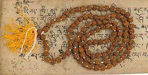 Collana Mala Tibetano Rosario Shiva Semi Rudraksh Rudraksha Ø 7mm Nepal 4833