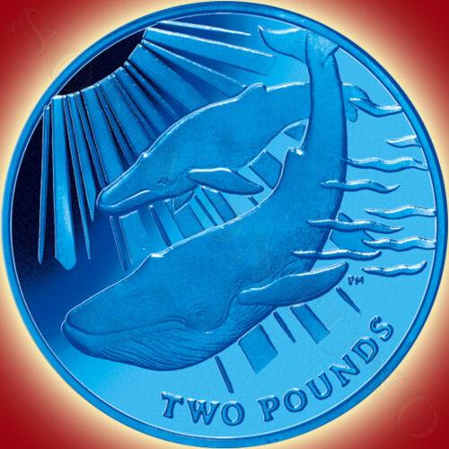 TITANIUM Coin in BOX with COA South Georgia /& Sandwich Islands 2013 Blue Whale