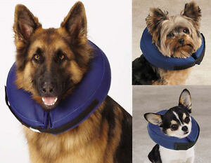 Inflatable-Collar-USA-Seller-Dog-E-Collar-Pet-Medical-Wound-Cone-Elizabethan