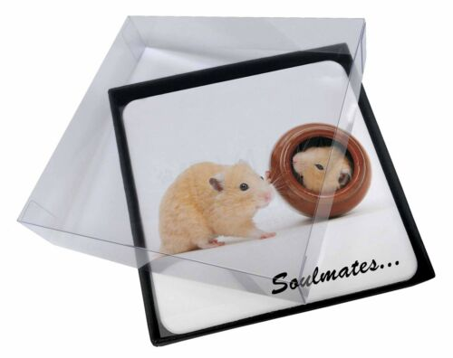 4x Hamsters in Pot Soulmates' Picture Table Coasters Set in Gift Box, SOUL87C