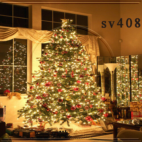 Christmas 10'x10' Computer-painted Indoor Scenic background backdrop SV408B881