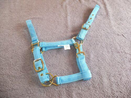 IV Horse Soft Web Fully Adjustable Headcollar several colours three sizes