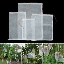 50PCS Gardening Vegetable Pollen Protection Fruit Fly Exclusion Bags