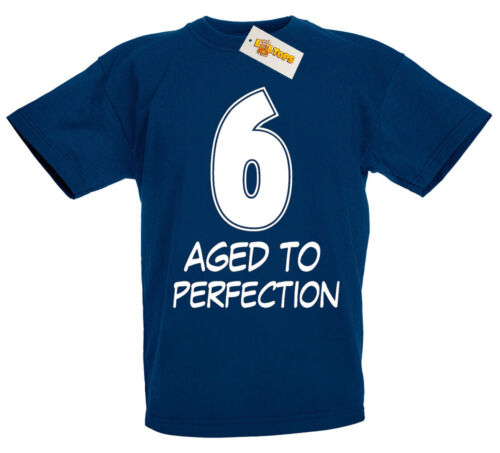 6th Birthday Gifts Presents for 6 Year Old Boys Girls 6 Aged Perfection T-Shirt