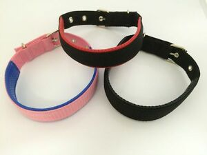Strong-Adjustable-Padded-Dog-Puppy-Pet-Collar-ID-Barrel-Offer-UK-Seller