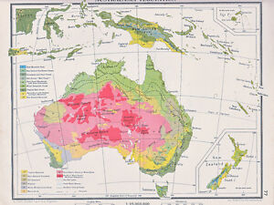 Map Of Australia New Zealand.Details About 1941 Map Australia New Zealand Vegetation Savannah Grassland Swamp Forest Etc