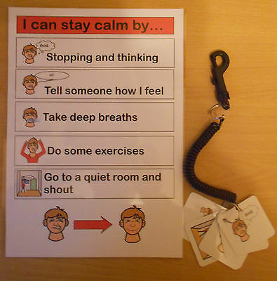 I CAN STAY CALM BY.. PROMPT CARD  & KEYRING GREAT FOR TIMES OF MELTDOWN