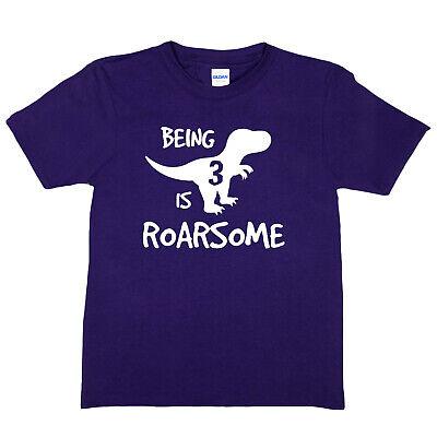 Birthday Kids 3 Today Age 3 Dinosaur Happy Birthday Present Funny Kids T shirt