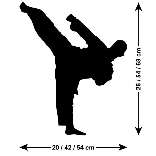 Standing Kick Martial Arts Sports Silhouette Karate Taekwondo Wall Sticker
