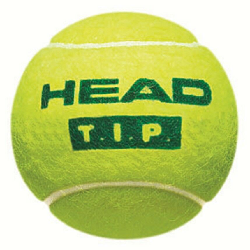 HEAD TIP green x 36 Tennisbälle