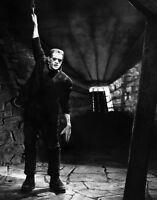 Famous Monsters Frankenstein Print 14 X 11