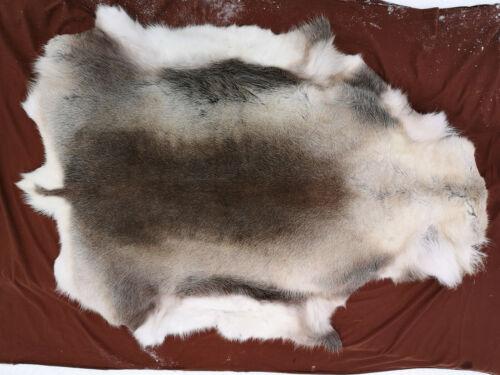 Reindeer skin //hide //rugs
