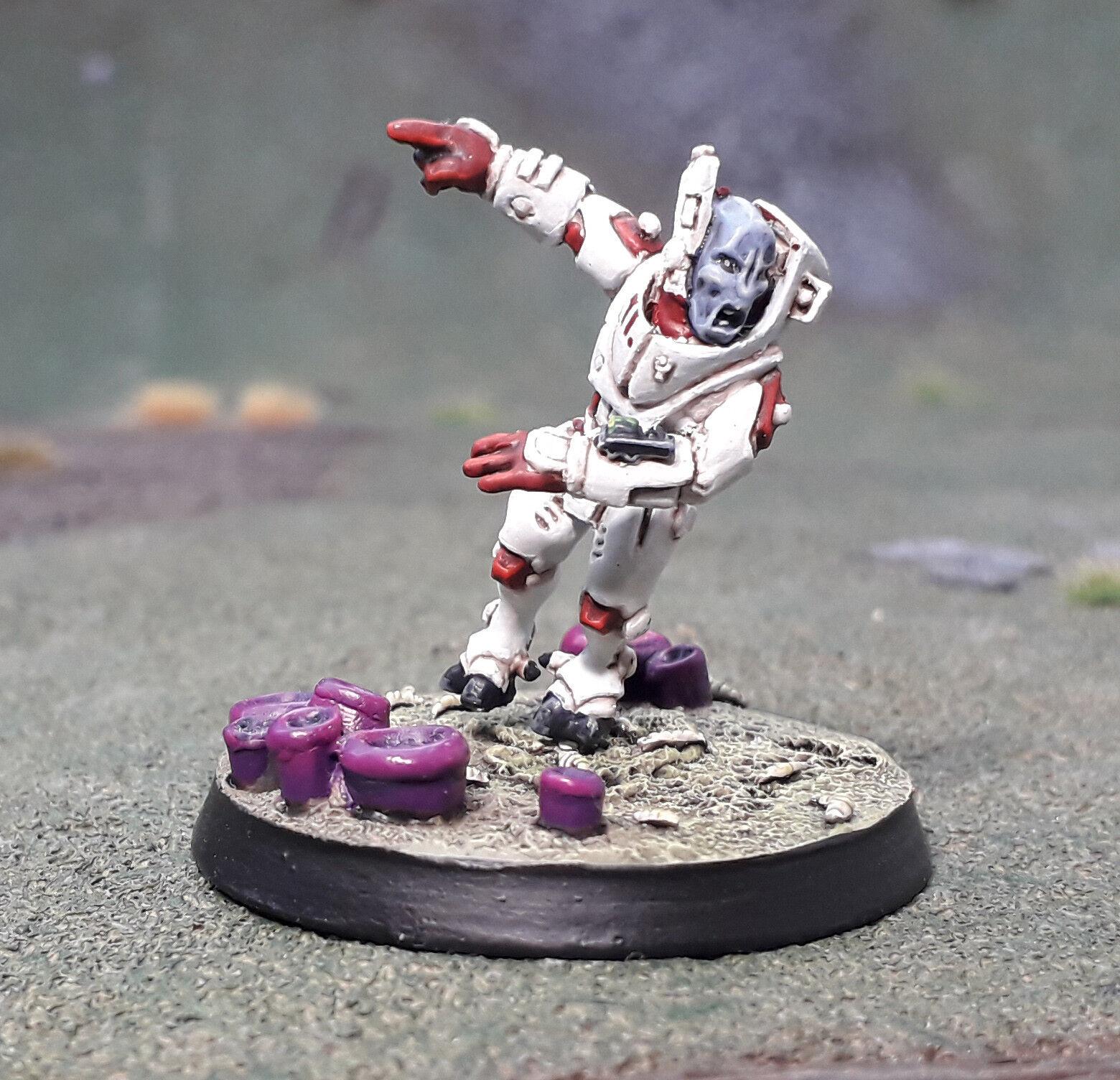 40k Tau Longstrike Pro Painted