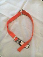 Team Realtree 1 X 26  Hunter Orange Chrome Plated Dog Collar . Pet
