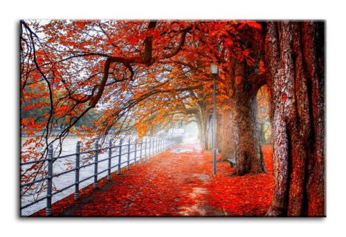 Large Wall Art Canvas Print of Red Leaves Park Framed