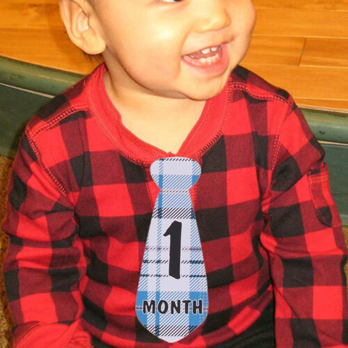 Monthly Baby Sticker Tie Necktie BOY Milestone Month Photo Prop New LH