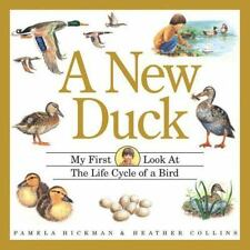 A New Duck : My First Look at the Life Cycle of a Bird (My First Look at Nature)