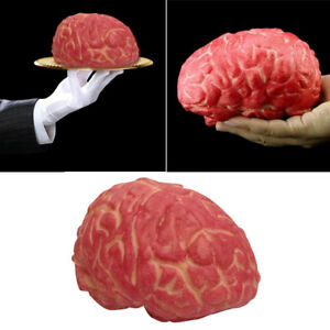Details about Lifelike Fake Bloody Human Brain Horror Prank Halloween Party  Decoration Super