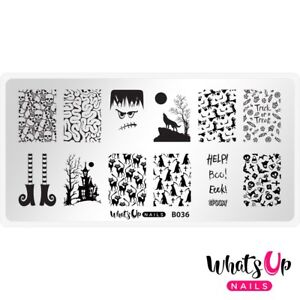 B036-Eeks-and-Screams-Stamping-Plate-For-Stamped-Nail-Art-Design