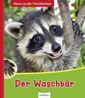 Meine große Tierbibliothek: Der Waschbär von Axel Gutjahr (2015, Gebundene Ausgabe)