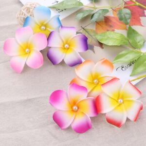 20pcs Flower Hair Clip Plumeria Hawaiian Hair Accessories for Wedding Event