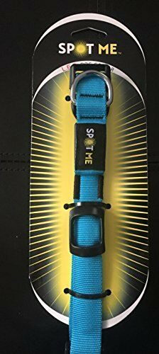 NEW X Small bluee USB Rechargeable LED Dog Collar FREE SHIPPING