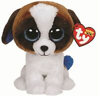 Duke - Ty Beanie Boos 6 inch - TY Boo Plush Teddy - Brand New Soft Toys