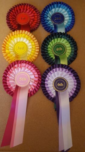 1st to 6th. 3 tier. for dogs,horse,pony,cattle shows, sport days and other event