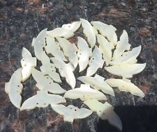 20 White Carved Shell Bird Shaped Beads 15mm #884