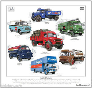 BEDFORD VEHICLES - FINE ART PRINT - O, OY, RL, S, KM & TK Lorries + CA (BEA) Van