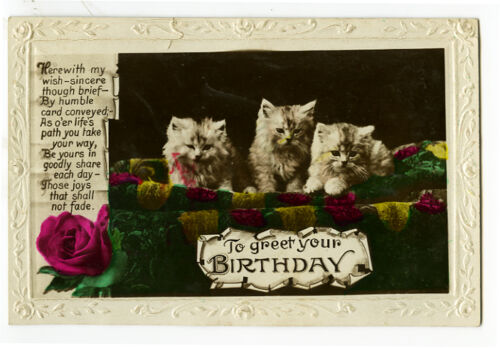 1920s Antique Fluffy LITTLE CATS Kittens vintage photo postcard