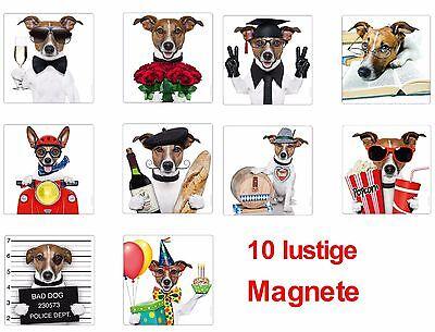 10-er Set Lustige Kühlschrankmagnete, Magnete Für Kinder 52 X 52 Mm Jack Russell Bevorder De Productie Van Lichaamsvloeistof En Speeksel