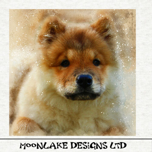 Chow Chow Fabric Cushion Upholstery Craft Quilting Panel Watercolour grunge